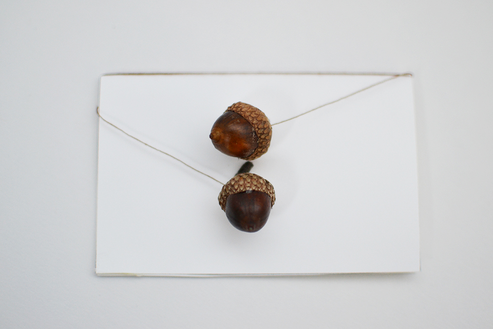DIY Acorn Place Cards